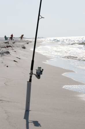 Download how much does an alabama fishing license cost for How much are fishing license
