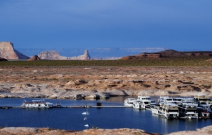Arizona fishing license az fishing license for Lake powell fishing license