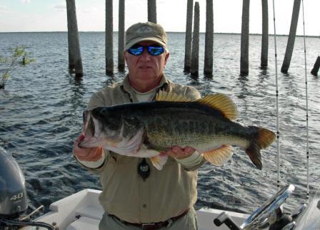 Nice Florida Bass